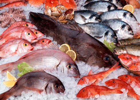 pescados