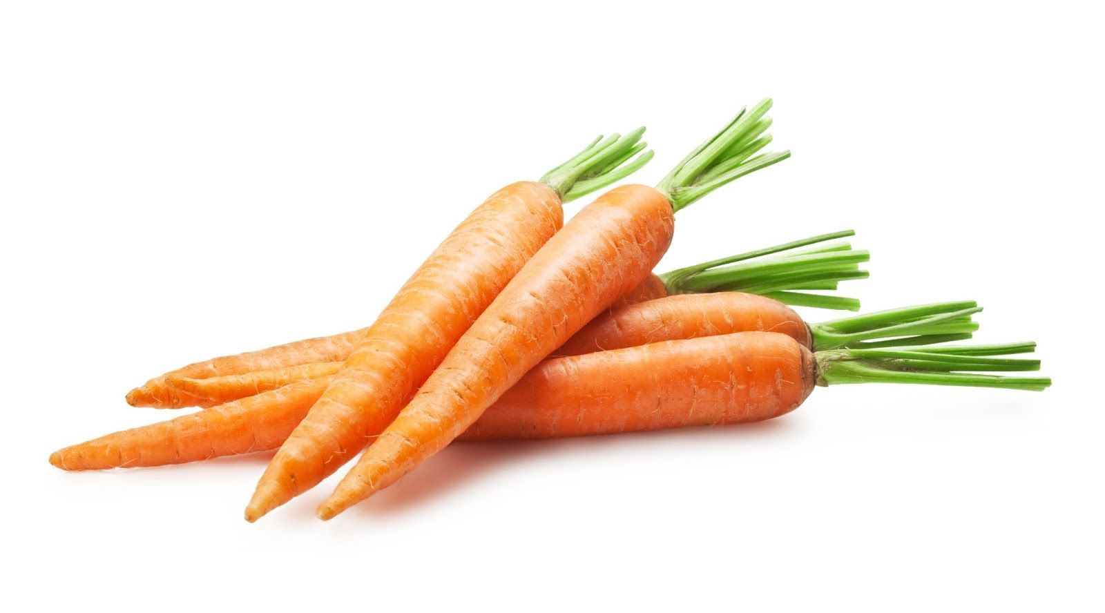 7 Cosas Que No Sabias De Las Zanahorias Sushifactoryblog View zanahoria's puzzles on jigsaw planet. 7 cosas que no sabias de las zanahorias