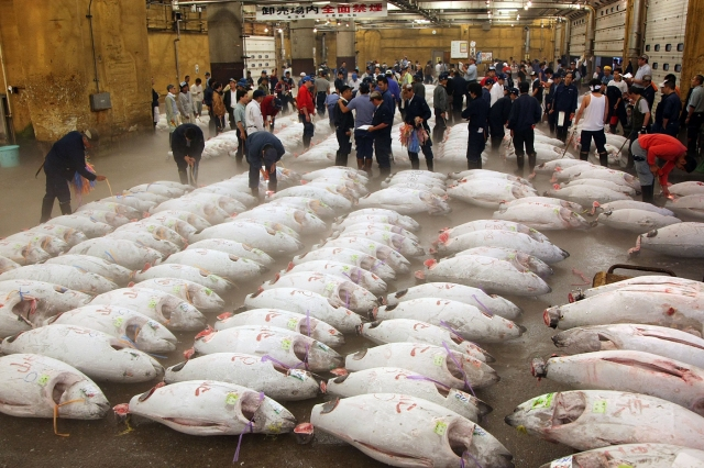 Mercado Tsukiji