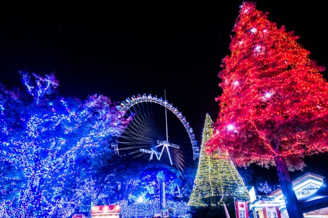 yomiuri-land-illumination-7-800x533