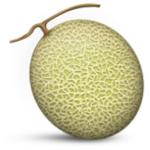 melon-yubari