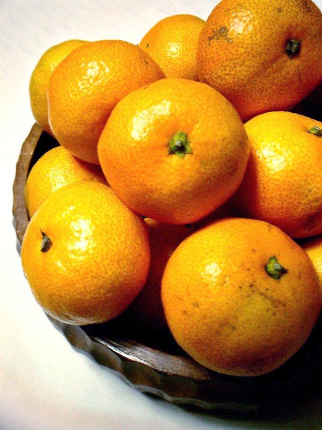 Citrus_unshiu-unshu_mikan-2
